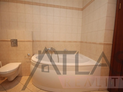 Rent of 6-bedroom apartment 240m2 Prague 5 - Smichov, Janackovo nabrezi