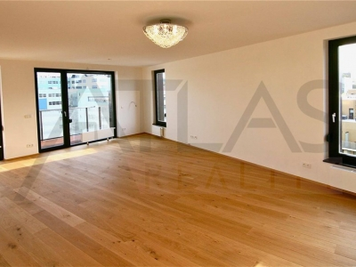 Rent of luxurious partially furnished 3-bedroom apartment, 142m2, Baarova, Praha 4