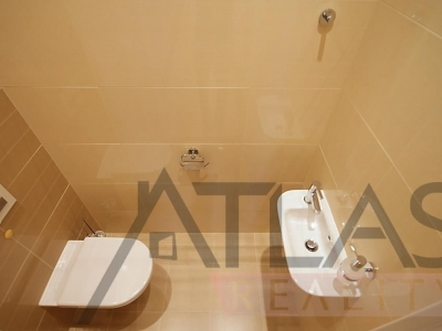 Rent of furnished one bedroom apartment (121 sq.m.), Prague 5 - Smichov
