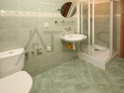 Rent of studio apartment in new house 40 m2 Melnik, Prazska steet