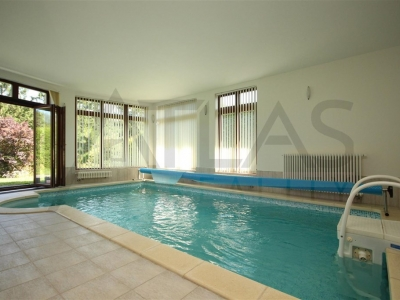 house for rent Prague Nebusice with swimming pool