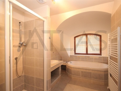 Luxury Villa with indoor pool, 4 Bedroom, 320 sq.m. in Prague 6 - Nebusice