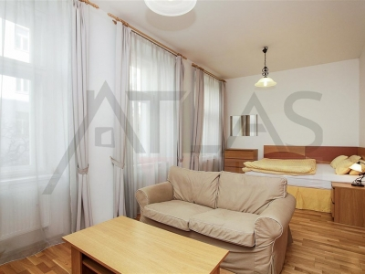 Short term/long term rent of fully furnished 1BD apartment, Prague 2 - Vinohrady
