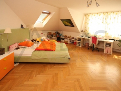 House for rent with outdoor pool Praha 6 - Lysolaje
